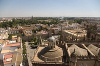 View of Seville's historic centre from the tower of Seville Cathedral, Seville, Andalusia, Spain, Europe