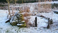 freezed up garden pond