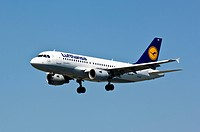Lufthansa Airbus A319 - 100 in the air
