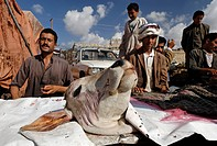 Butcher, butchery in Amran, Yemen