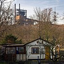 allotment gardens in front of industrial plant, Germany, North Rhine_Westphalia, Ruhr Area, Duisburg