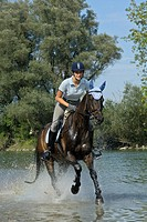 Young lady rider galloping in the Isar river, Moosburg, Bavaria, Germany