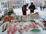 fish market at the Campo Santa Margherita, Italy, Venice