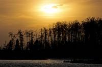 Astotin Lake at night, Canada, Alberta, Elk Island National Park
