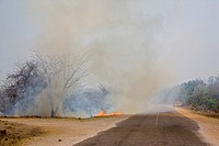 Bush fire in Zambia, Africa
