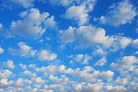 Sky filled with scattered cumulus clouds