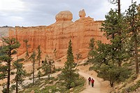Hiking trail in Bryce Canyon, Bryce Canyon National Park, Utah, USA