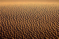 Sand structures on a sand dune in the Sahara desert  Libya