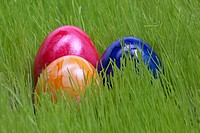 Easter eggs on the grassland / Ostereier auf der Wiese