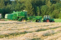 Harvest of a wheat field with a harvester