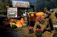 Fall decoration at a booth selling peanuts, Georgia, USA