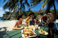 barbecue on the beach,Baradal islet,Tobago Cays,Grenadines islands,Saint Vincent and the Grenadines,Winward Islands,Lesser Antilles,Caribbean Sea