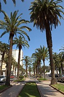 Boulevard Houphouet Boigny, Casablanca, Morocco, Africa
