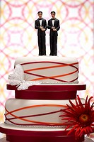Groom Figurines on Wedding Cake (thumbnail)