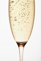 Glass of Champagne close up in studio