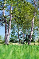 Bicycle in a park, Sugadaira Plateau, Nagano Prefecture, Japan