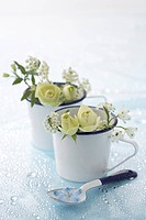 Flowers in coffee cups