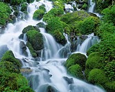 Waterfall and moss covered rocks, Hinoemata_son, Fukushima Prefecture, Japan