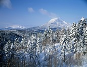 Akan Fuji and forest in winter, Hokkaido, Japan