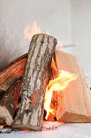 Close_up of firewood burning