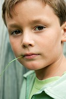 Boy holding a blade of grass in his mouth