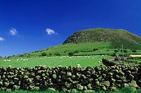 Slemish Mountain, Co Antrim, Ireland