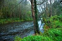 Eo river. San Tirso de Abres. Asturias. Spain.