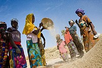 Group of women winnowing millet  Takorka  Niger