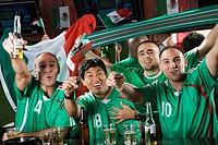 Cheering men drinking in sports bar