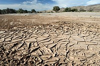 Dried river bed, Kaokoland, Namibia, Africa