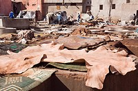 Vats and leather hides in an old Tannery owned by cooperative of families in the Medina, Marrakech, Morocco, North Africa, Africa