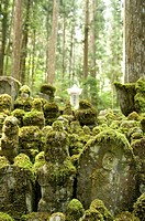 Okunoin Gokusho graveyard  Over 200,000 grave stones lie along this 2 km path among cedar trees that are hundreds of years old  Koya-san, Wakayama Pre...