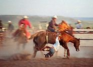 Navajo rodeo, Arizona