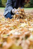 A young woman gathering autumn leaves (thumbnail)