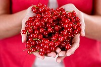 A woman holding a handful of redcurrants (thumbnail)