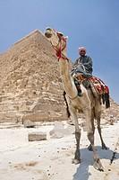 Kameltreiber vor Chephren Pyramide, Kairo, Aegypten, Camel Driver in Front of Pyramid of Khafra, Cairo, Egypt