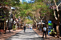 Spain _ Canary Islands _ Tenerife _ Santa Cruz de Tenerife _ Pedestrian street _ Historic district