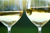 Two glasses of white wine in vineyard