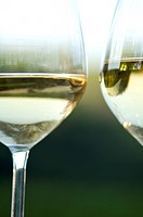 Two glasses of white wine in vineyard (thumbnail)