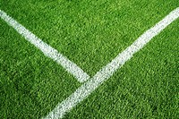 Soccer field with a white line on top of green grass
