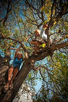 Twelve year old boy and girl in tree, Redvers, Saskatchewan, Canada