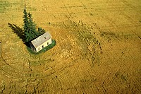 Aerial of a house in the middle of a field, Saskatchewan, Canada