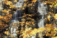 Bridal Veil Falls, Gatineau Park, Quebec