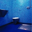 View of a blue bathroom