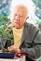 Senior Japanese man looking at bonsai tree