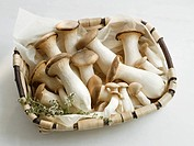 A basket of king oyster mushrooms