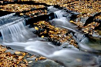 beautiful autumn waterfal with fallen leaves on black rocks