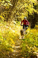 A young woman mountain biker and her dog ride along the Deer Creek trail on the shores of Christina Lake, British Columbia, Canada