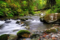 Goldstream River in Goldstream Provincial Park near Victoria, British Columbia, Canada