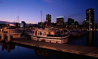 Boats at a harbor, Inner Harbor, Baltimore, Maryland, USA